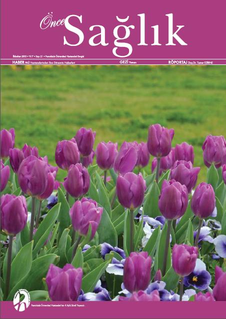İlkbahar 2013